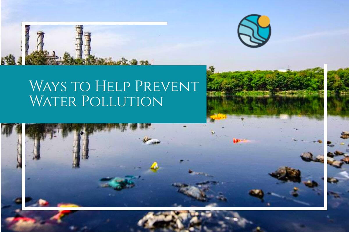 water pollution help we need